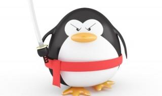 Pingvin algoritmus Google