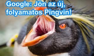 Google új Pingvin algoritmus