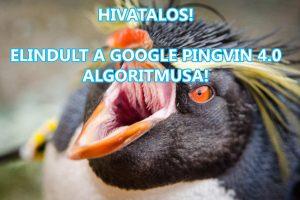 Pingvin 4.0
